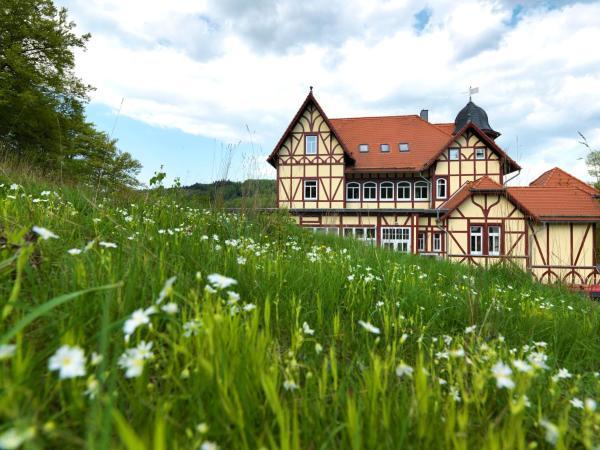 Hotel Pictures: Hotel FreiWerk, Stolberg i. Harz