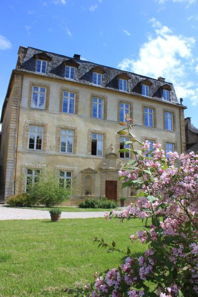 Hotel Pictures: Le Château Ricard, Saint-Geniez-d'Olt