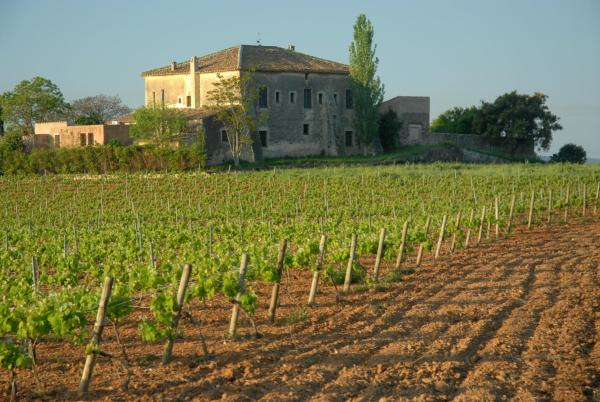 Hotel Pictures: , Sant Jaume dels Domenys
