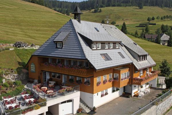 Hotel Pictures: Pension Glöcklehof, Todtnauberg