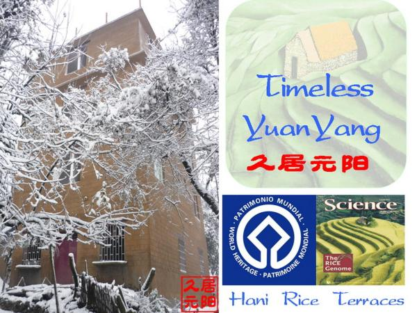 Hotel Pictures: Timeless Hostel Yuanyang, Yuanyang