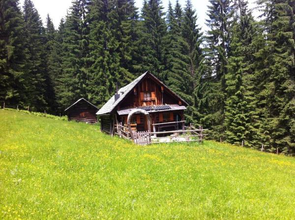 Foto Hotel: Schmiedsipplhütte, Gosau