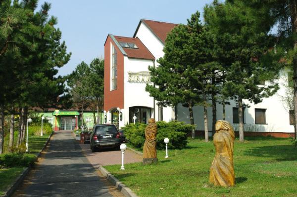 Hotel Pictures: Hotel Širák, Most