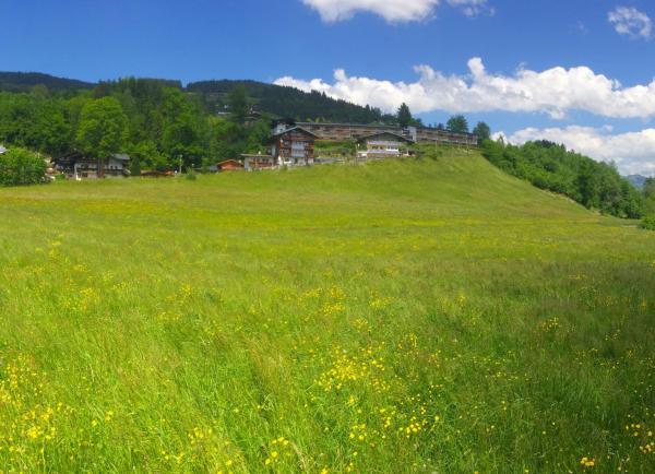 Hotellbilder: Apartment Weinberg, Kirchberg in Tirol