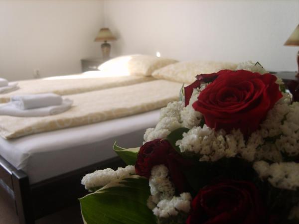 Zdjęcia hotelu: Motel Boss, Sarajewo