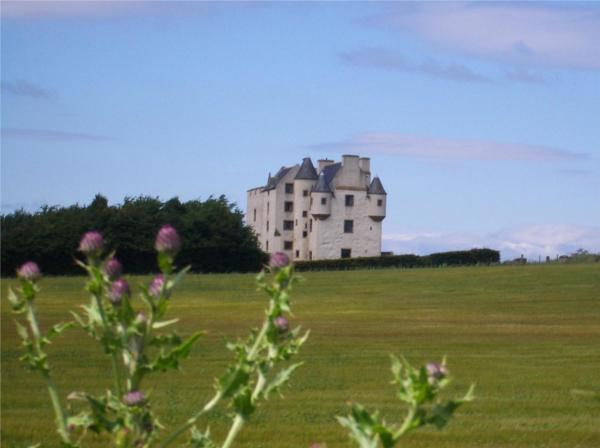 Hotel Pictures: Faside Estate, Musselburgh