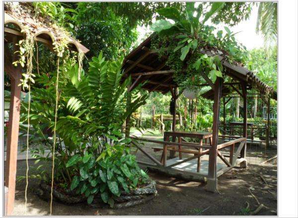 Hotel Pictures: Taylor's Place Tortuguero Costa Rica, Tortuguero