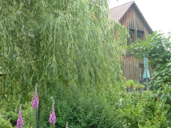 Hotel Pictures: Ferienwohnung Lotti, Trusetal