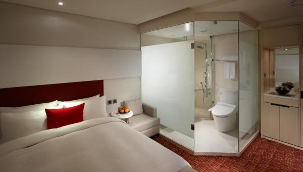 Standard Double Room with no Window