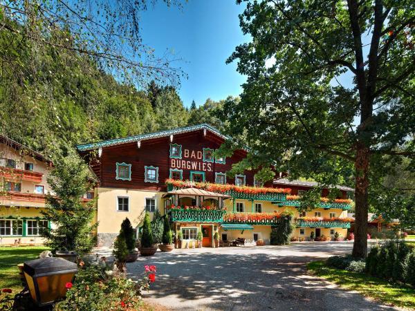 酒店图片: Pension Heilbad Burgwies, 斯塔费顿