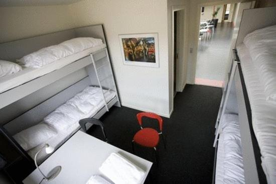 Hostel Room (3 Adults)