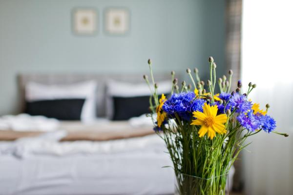 One-Bedroom Apartment Saulė