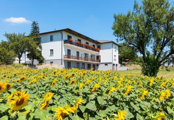 Photos de l'hôtel: Gasthof-Pension Wein, Breitenbrunn