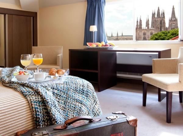 Hotel Pictures: Palacio de los Blasones Suites, Burgos