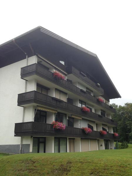 Hotel Pictures: Ferienwohnung Steinbock, Flachau