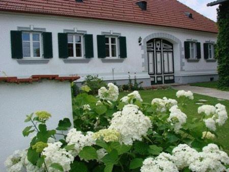 Fotos do Hotel: Arkadenhof Kurtz, Markt Allhau