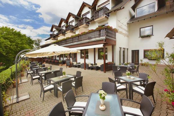 Hotel Pictures: Landhotel Lembergblick, Feilbingert