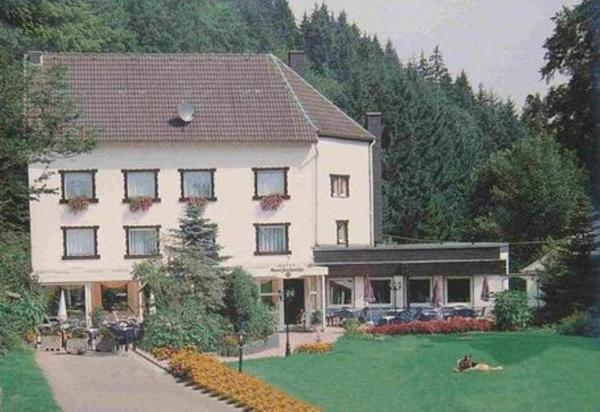 Hotel Pictures: Hotel Grenzbachmühle, Horhausen