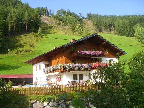 酒店图片: Untersteinhof, Forstau