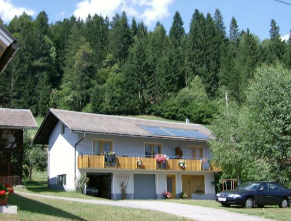 Hotel Pictures: Ferienhaus Schneiderbauer, Berg im Drautal