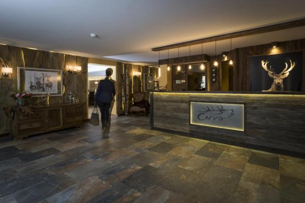Hotel Pictures: Hotel Cervo, Sils Maria