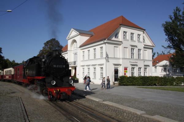Hotel Pictures: Halbersbacher Prinzenpalais, Bad Doberan