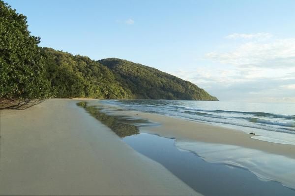 Zdjęcia hotelu: Cape Trib Beach House, Cape Tribulation