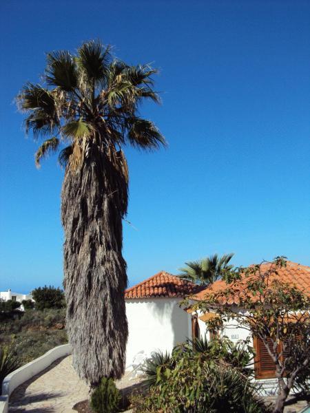 Hotel Pictures: Casas Las Dos Palmeras, Los Llanos de Aridane
