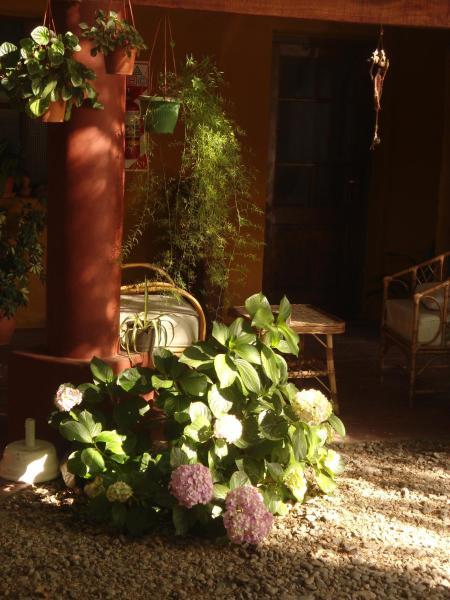 Fotos do Hotel: Hostal La Montaña, Cafayate
