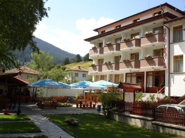 Hotel Pictures: Yagodina Family Hotel, Yagodina