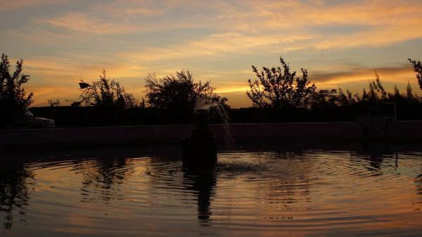 Hotel Pictures: Desert Fox Club Camp, Bawati