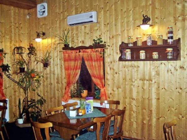 Hotel Pictures: Restaurace a Penzion u Vladaru, Mikulášovice