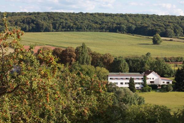 Hotel Pictures: Auberge Du Parc, Baudricourt