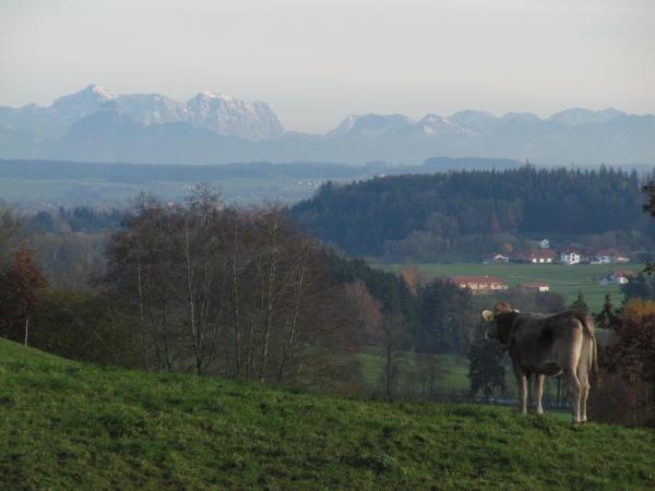 Hotel Pictures: Ferienwohnung Altusried, Altusried