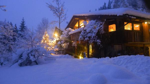 Φωτογραφίες: Luxus Chalet Mühlermoos, Ramsau im Zillertal
