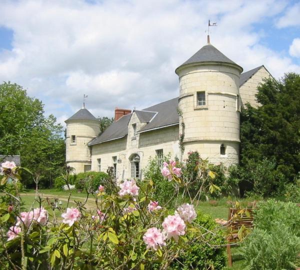Hotel Pictures: Le Manoir de Champfreau, Turquant