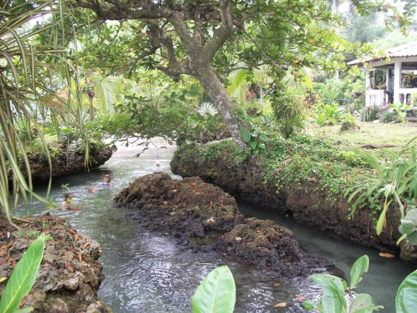 Hotel Pictures: Piscina Natural on the Sea, Cahuita