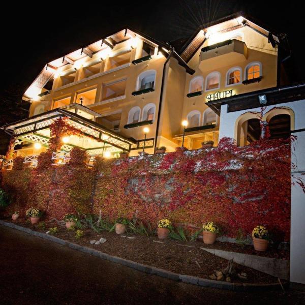 ホテル写真: Hotel-Restaurant Häupl, Seewalchen