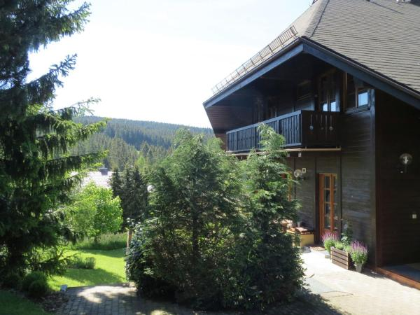 Hotel Pictures: Hill Side Apartment, Feldberg