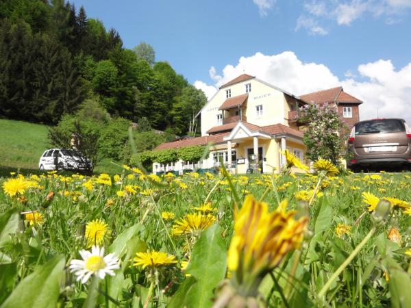 Hotel Pictures: Familiengasthof Maier, Mautern