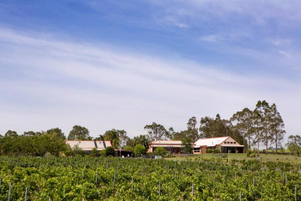 Hotellikuvia: Bluebush Estate, Lovedale