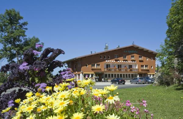 Hotel Pictures: Hotel Restaurant La Spatule, Logis du Jura, Lamoura
