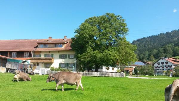 Hotelbilleder: Sägerhof Bader, Rettenberg