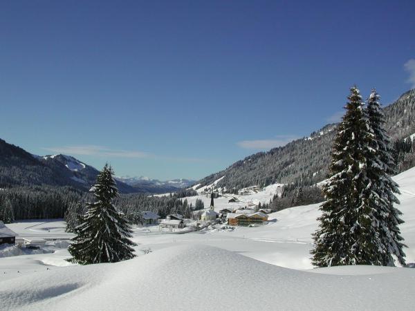 Hotel Pictures: Kienles Adlerkönig, Balderschwang
