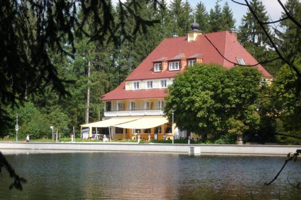 Hotel Pictures: Hotel Waldsee, Lindenberg im Allgäu