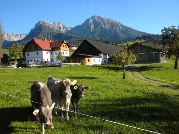 Hotelbilleder: Bio-Urlaubshof Dansbach, Spital am Pyhrn