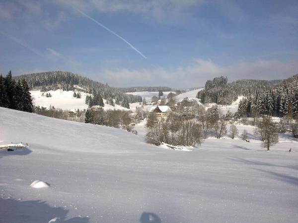 Hotel Pictures: Ferienwohnung am Sägberg, Oberkirnach