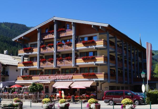 酒店图片: Vital - und Wellnesshotel Hanneshof, 费尔兹姆斯