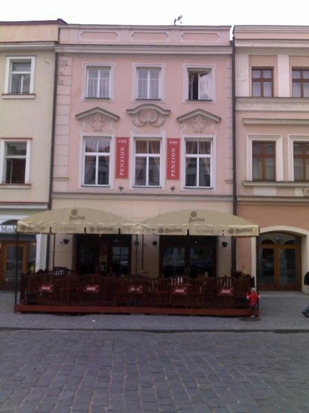 Hotel Pictures: Penzion U Jana, Hradec Králové