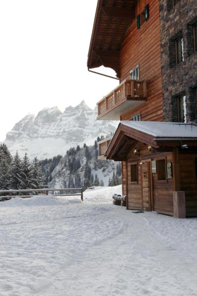 Hotel Pictures: Mountain Lodge, Les Crosets